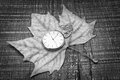 old-watch-autumn-leaf-symbol-nostalgia-pocket-32301428